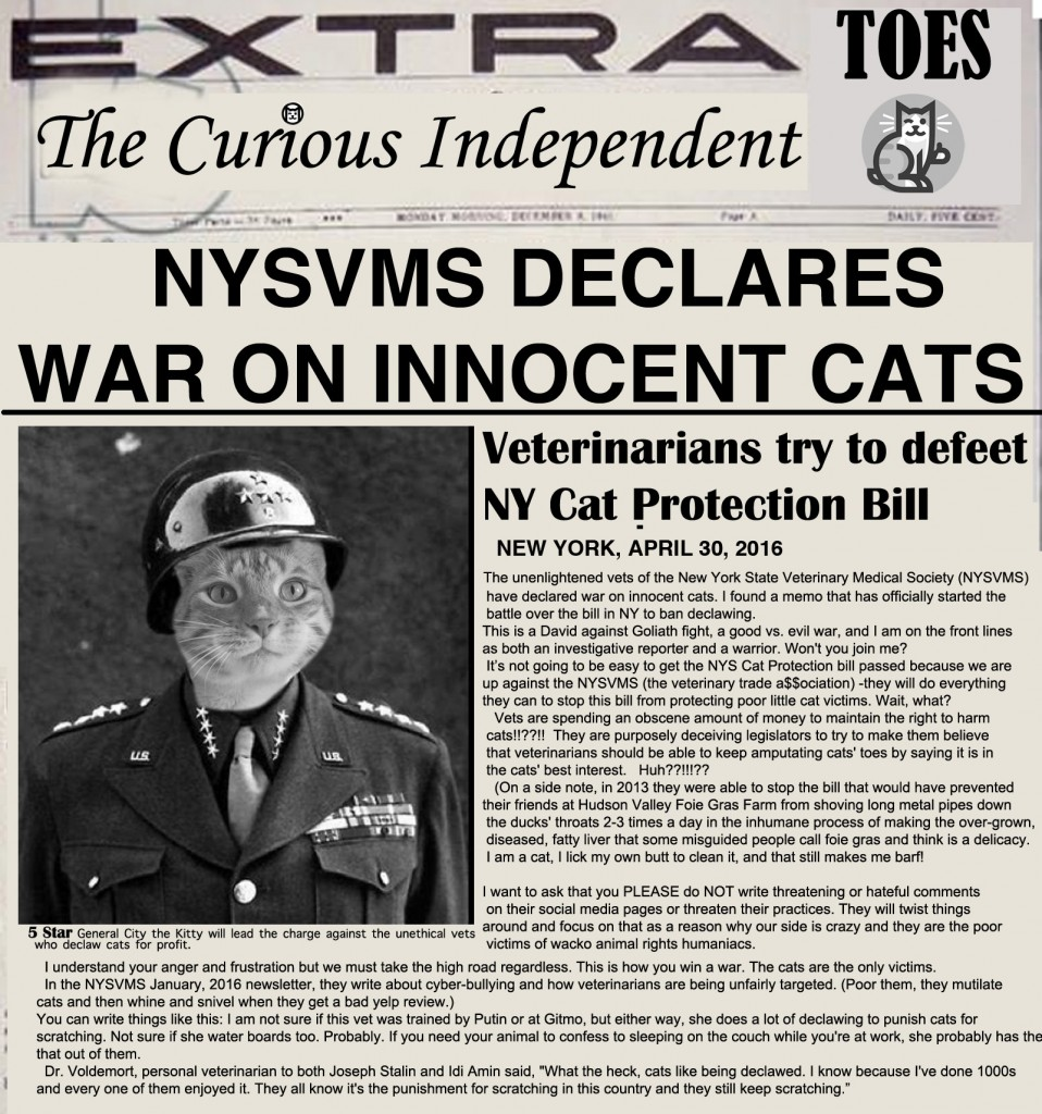 NYSVMS Newspaper